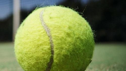 ставок на теннис догон